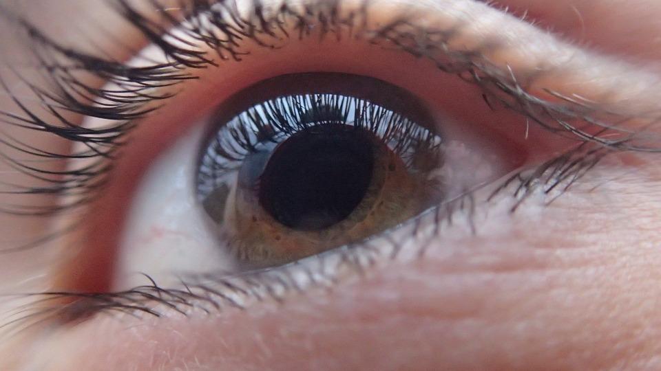 Глаукомата - автоимунно заболяване?