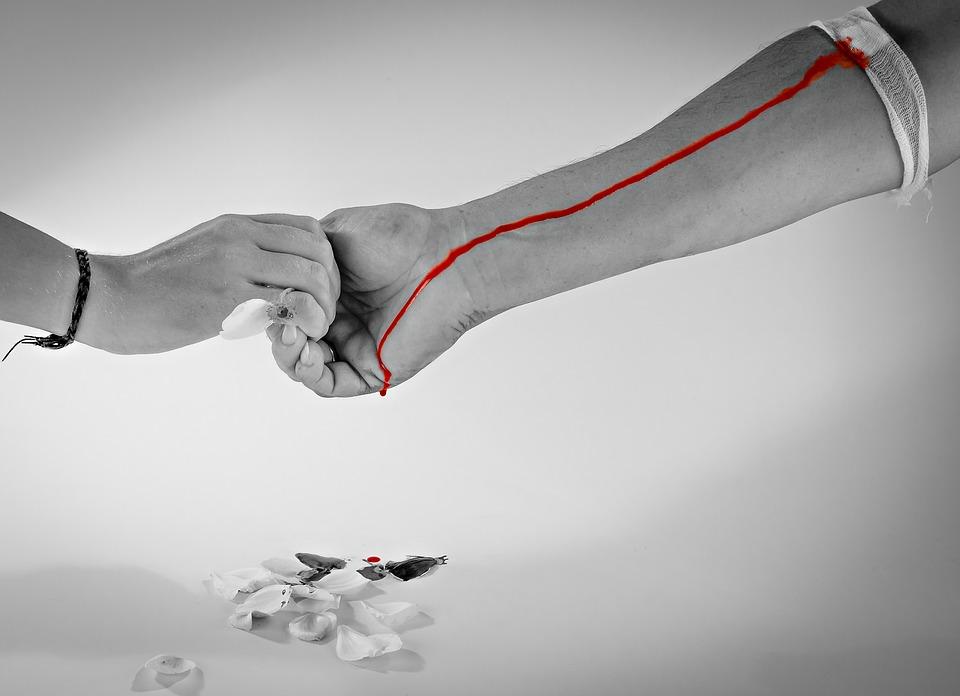 Втора кръводарителска кампания