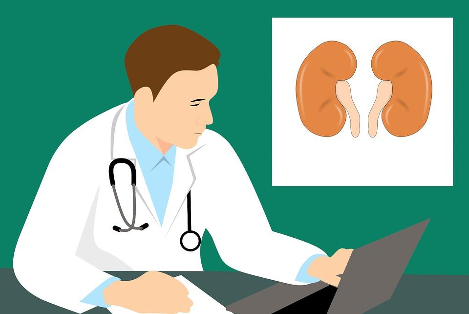 Безплатни прегледи за хора с предстояща чернодробна или бъбречна трансплантация