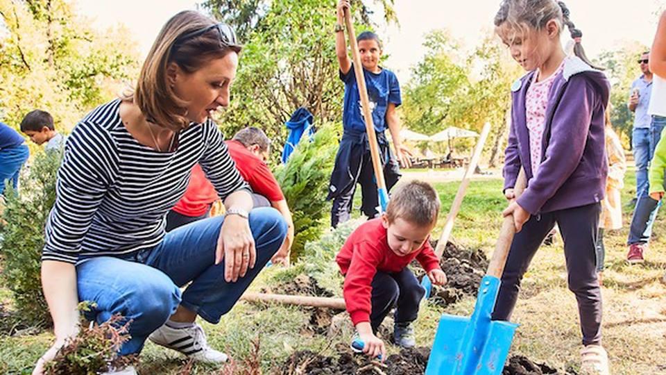 Засади дърво, помогни на дете
