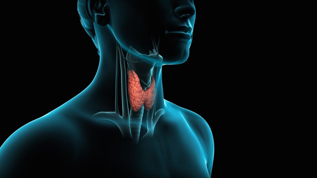 История на Световния ден на щитовидната жлеза