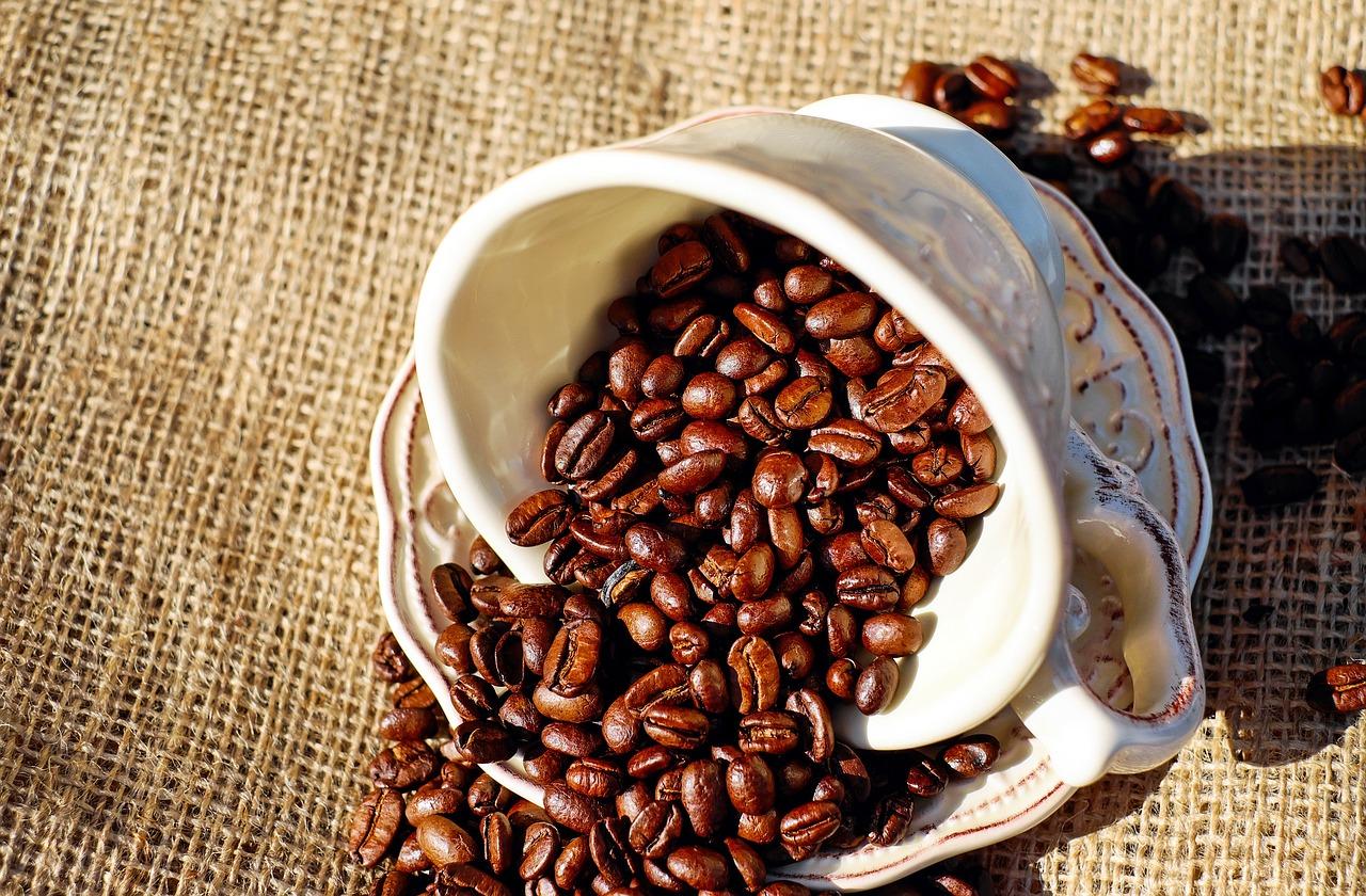 Алцхаймер, Паркинсон и склероза се повлияват от кафе и ролипрам