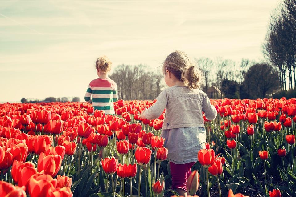 Безплатни прегледи за деца в Хасково