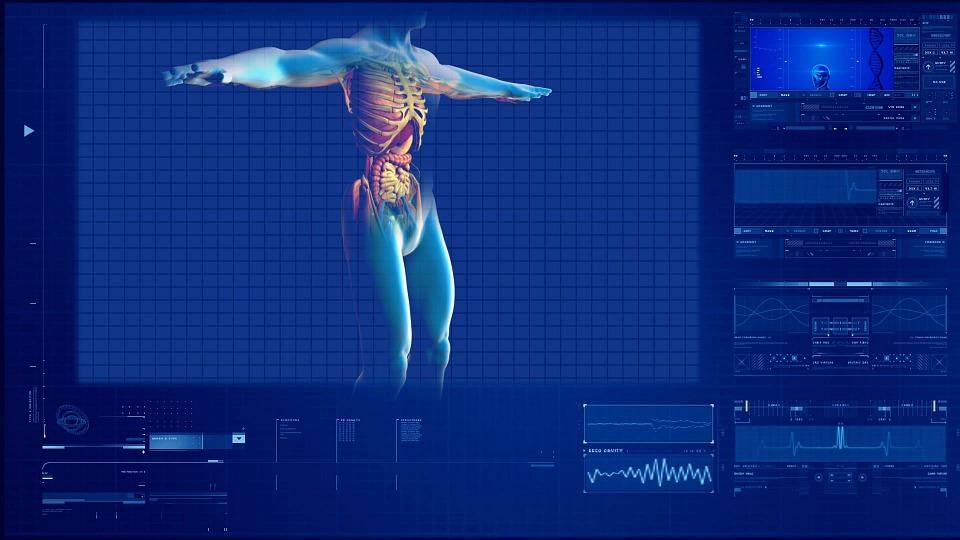 Изкуствените органи: поглед към медицината на бъдещето!