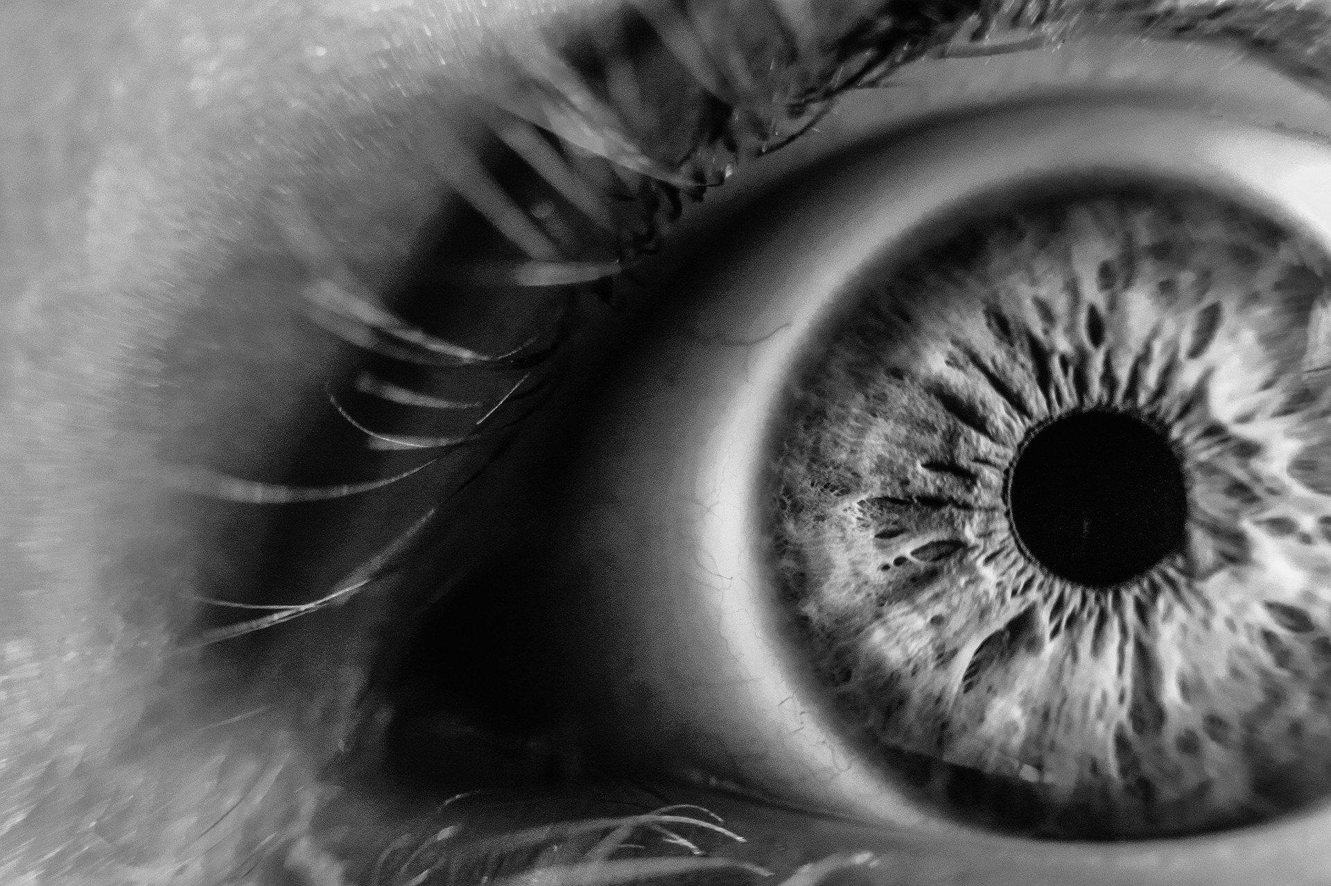 "Безплатни прегледи за влажна дегенерация на макулата организира Клиниката по очни болести на УМБАЛ ""Свети Георги"""