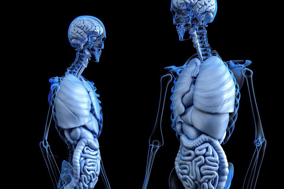 Методи за профилактика на рака на дебелото черво