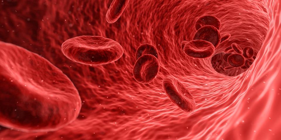 6 месеца ще продължи информационната кампания за злокачествените заболявания на кръвта