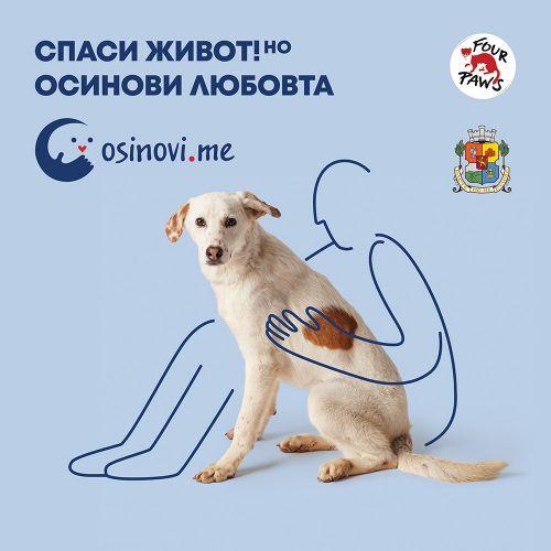 """""""Четири лапи"""" отбелязва Световния ден за защита на животните с изложба от снимки на открито под мотото """"Осинови любовта"""""""
