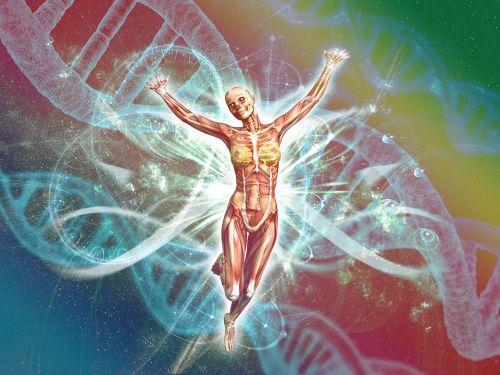 Изследванията на генетичното изменение на клетките помагат на лекарите да намират потенциално най-доброто лечение за лимфома