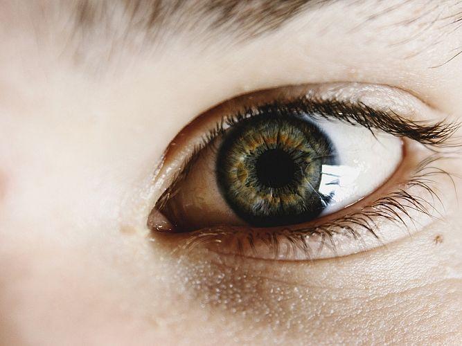 """Проект """"Равни шансове за социална интеграция и заетост за хората с нарушено зрение"""" представят днес"""