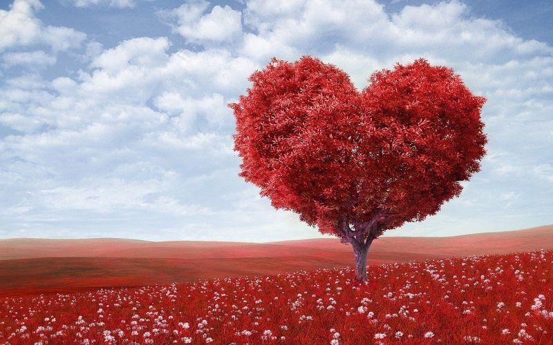 Безплатни прегледи за хора със сърдечни малформации